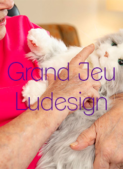 grand jeu ludesign